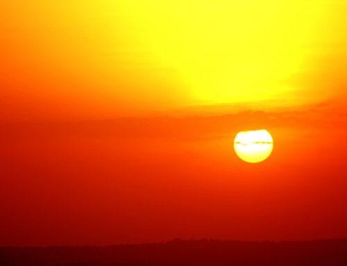 DOMUS 2020. Non teme il Surriscaldamento Globale